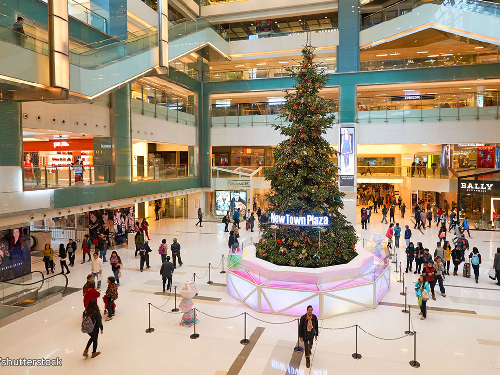 Shopping Malls Security Services